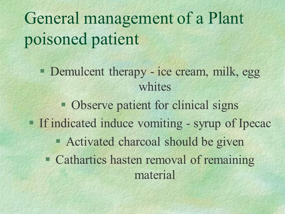 General management of a Plant poisoned patient §Demulcent therapy - ice cream, milk, egg whites §Observe patient for clinical signs §If indicated induce vomiting - syrup of Ipecac §Activated charcoal should be given §Cathartics hasten removal of remaining material