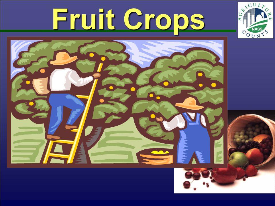 Tree Fruit & Grapes Utilized Production Tons Fresh Equivalent Jul 2012 PA - 2010PA - 2011 National Ag Statistics Service-PA, USDA