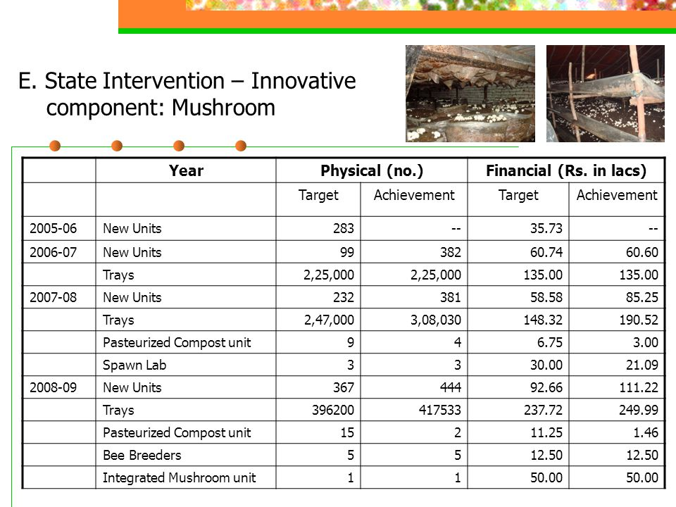 E. State Intervention – Innovative component: Mushroom YearPhysical (no.)Financial (Rs. in lacs) TargetAchievementTargetAchievement 2005-06New Units28