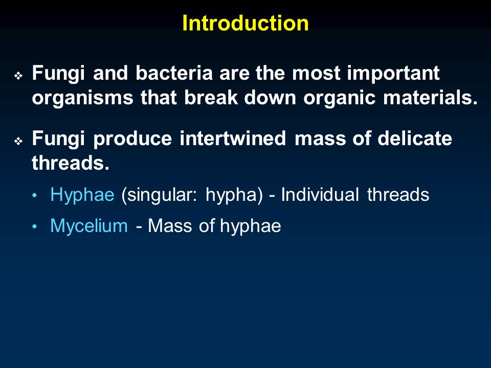 Introduction  Fungi and bacteria are the most important organisms that break down organic materials.