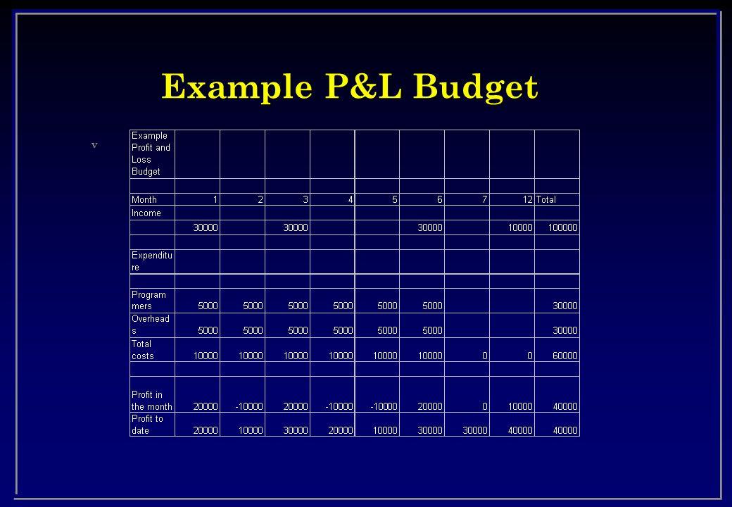 Example P&L Budget v