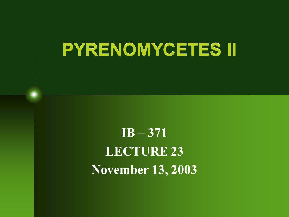PYRENOMYCETES II IB – 371 LECTURE 23 November 13, 2003