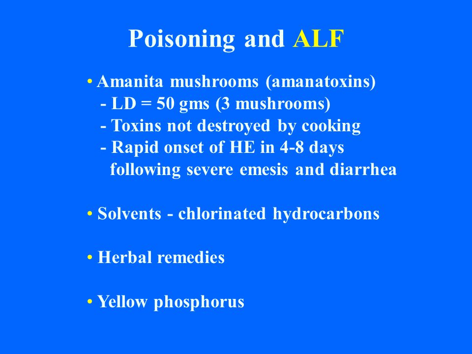 Poisoning and ALF Amanita mushrooms (amanatoxins) - LD = 50 gms (3 mushrooms) - Toxins not destroyed by cooking - Rapid onset of HE in 4-8 days follow