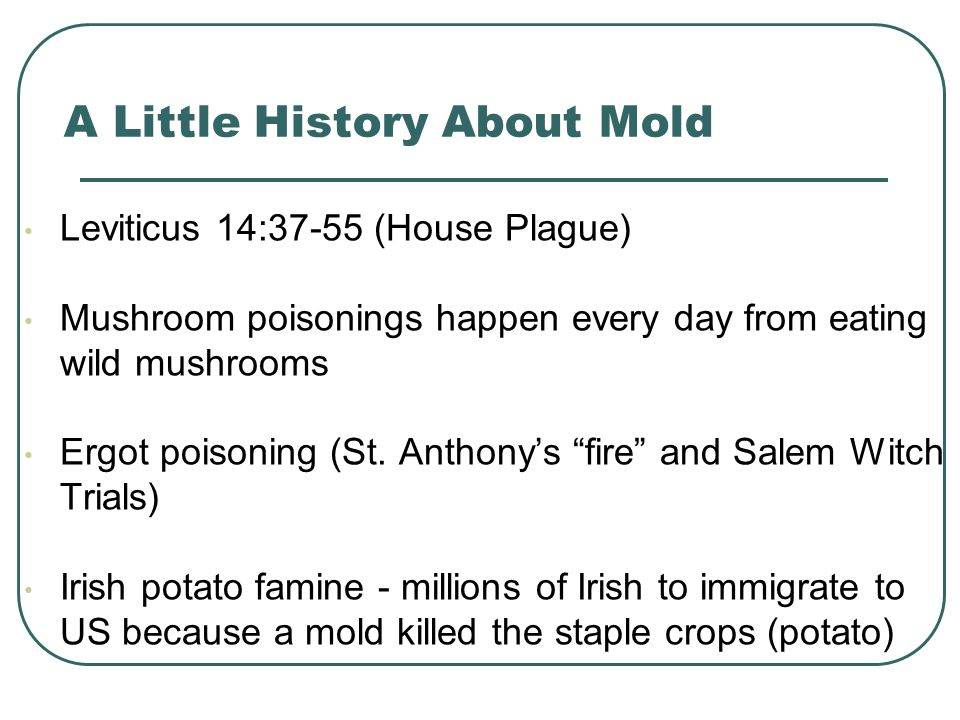 A Little History About Mold Leviticus 14:37-55 (House Plague) Mushroom poisonings happen every day from eating wild mushrooms Ergot poisoning (St.