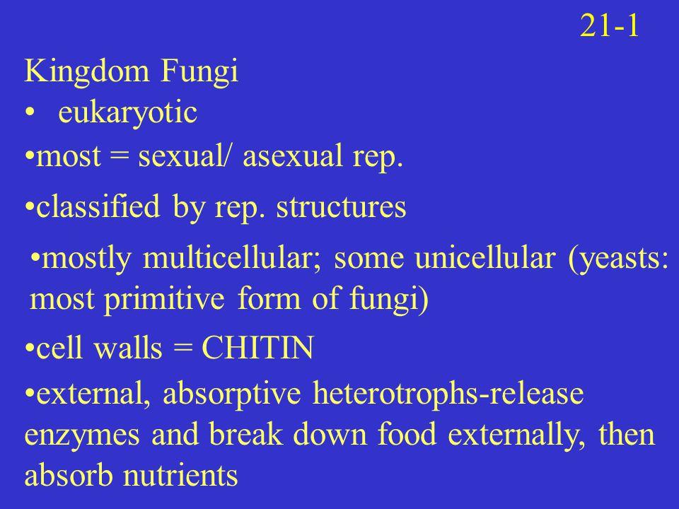 Kingdom Fungi eukaryotic 21-1 most = sexual/ asexual rep.