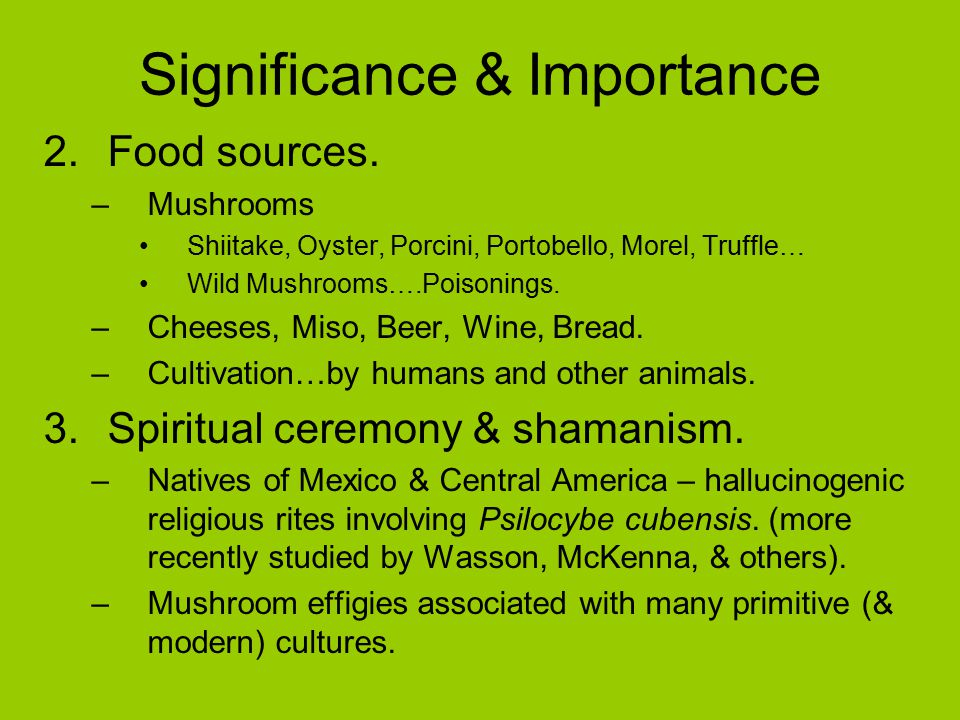 Significance & Importance 2.Food sources.