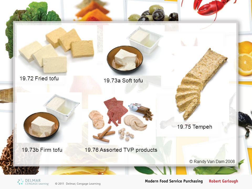 19.72 Fried tofu 19.73a Soft tofu © Randy Van Dam 2008 19.73b Firm tofu19.76 Assorted TVP products 19.75 Tempeh