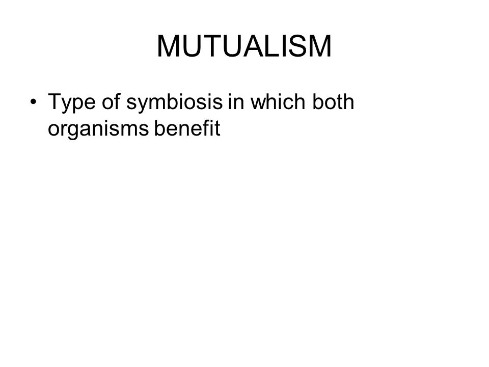 MUTUALISM Type of symbiosis in which both organisms benefit