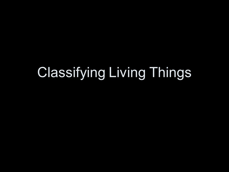 What are the characteristics of Living Things.What makes something alive.