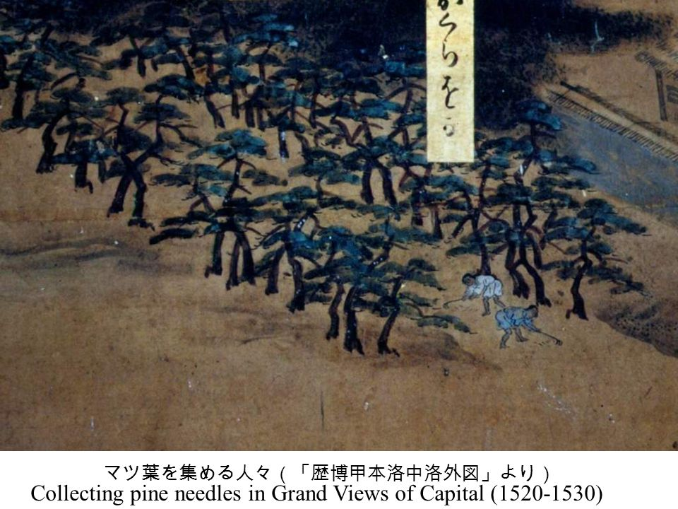 + Villagers in Midoro bought the right of grass harvest in Kibune (AD1599) Foundation of Heian Capital (AD794) Pottery kilns were made (6-7th century) Pine forest in Grand View in Capital (ca.