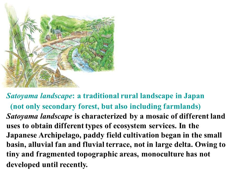 As Satoyama provides various materials, people have intentionally kept high diversity of useful plants and animals.