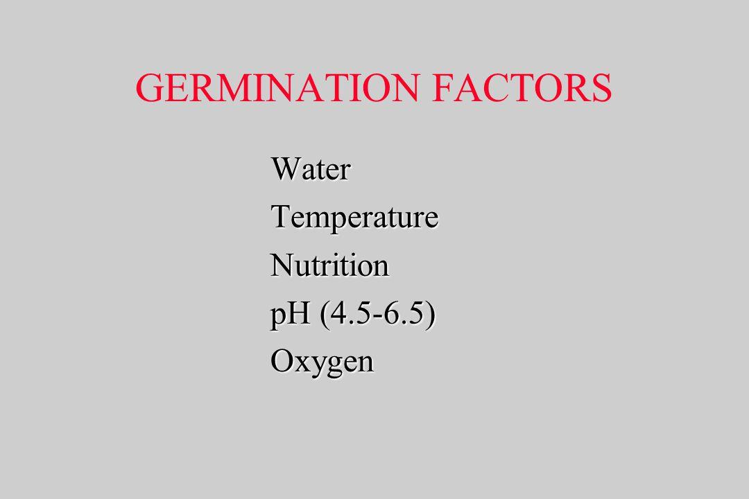 GERMINATION FACTORS WaterTemperatureNutrition pH (4.5-6.5) Oxygen