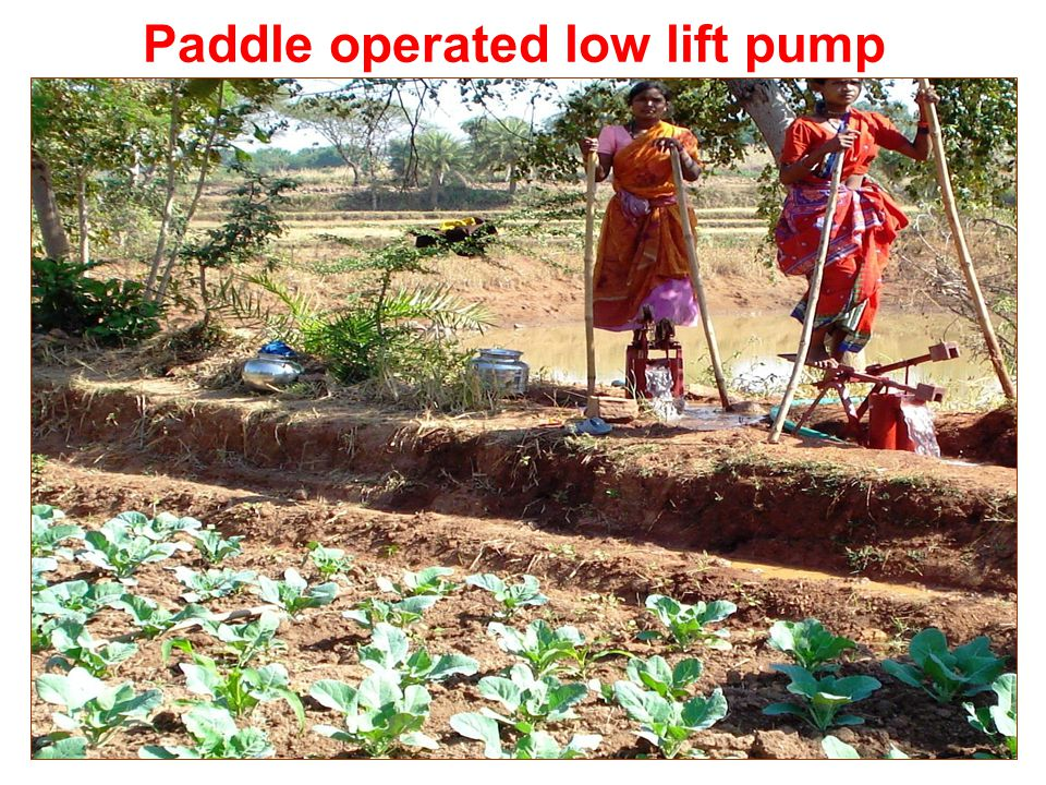 18 Paddle operated low lift pump