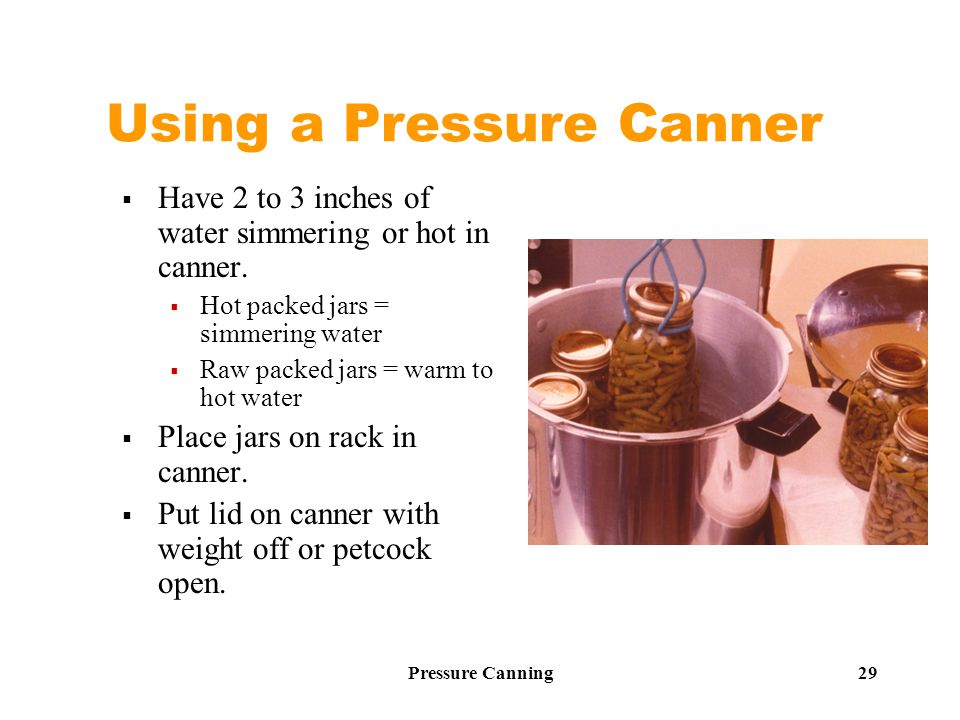 Pressure Canning 29 Using a Pressure Canner  Have 2 to 3 inches of water simmering or hot in canner.