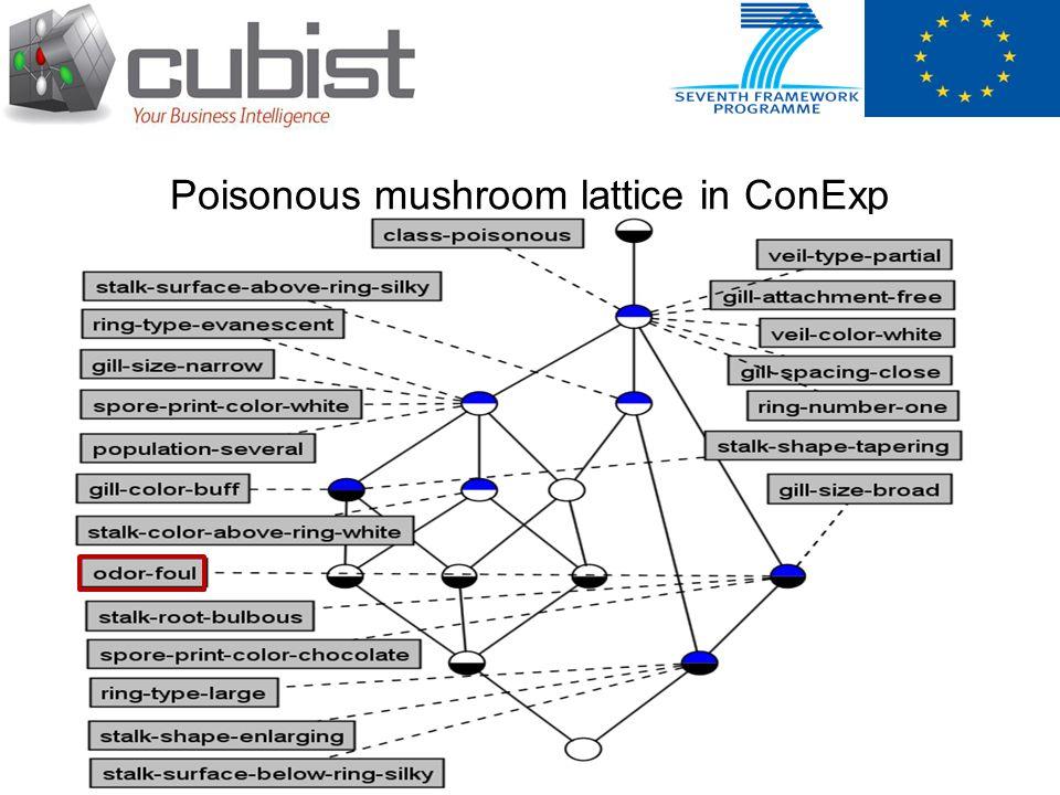 Poisonous mushroom lattice in ConExp
