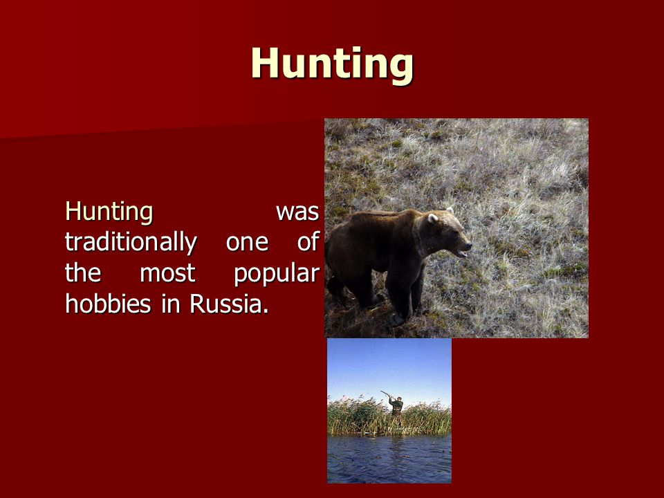 Hunting Hunting was traditionally one of the most popular hobbies in Russia.