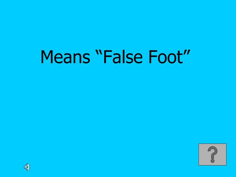 Means False Foot