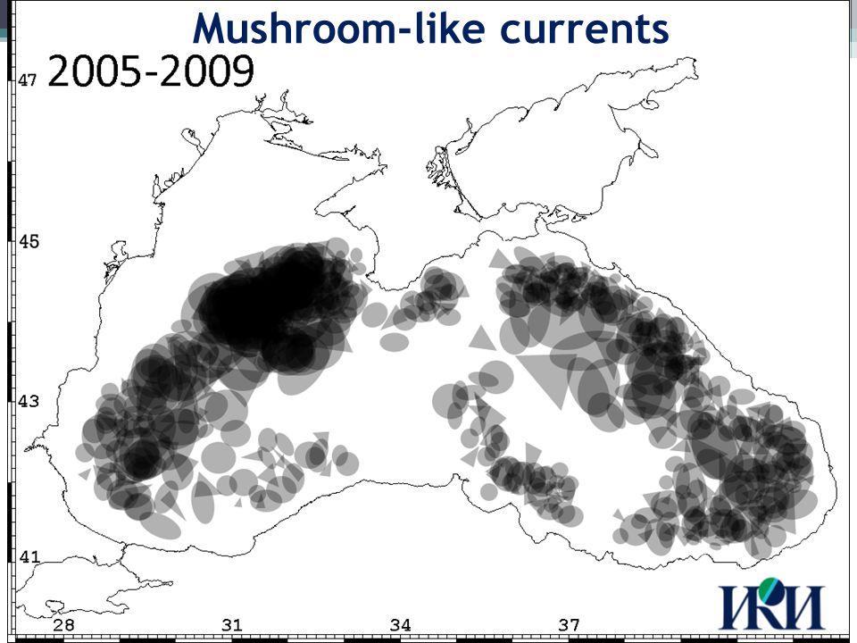 2008 interannual variability Mushroom-like currents: 9