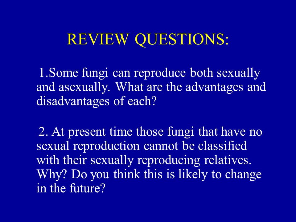 REVIEW QUESTIONS: 1.Some fungi can reproduce both sexually and asexually. What are the advantages and disadvantages of each? 2. At present time those