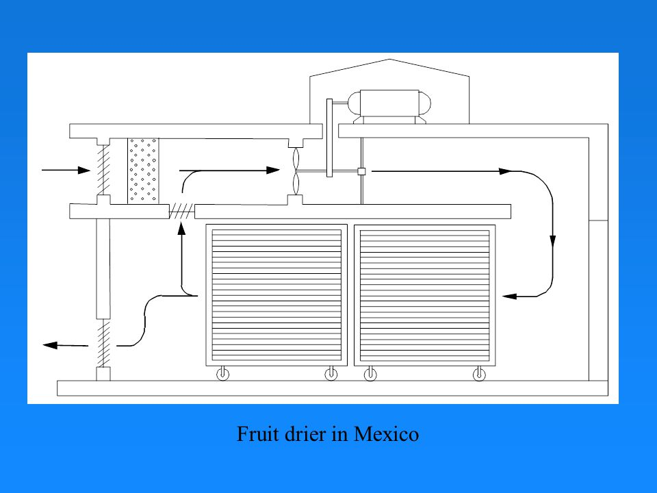 Fruit drier in Mexico