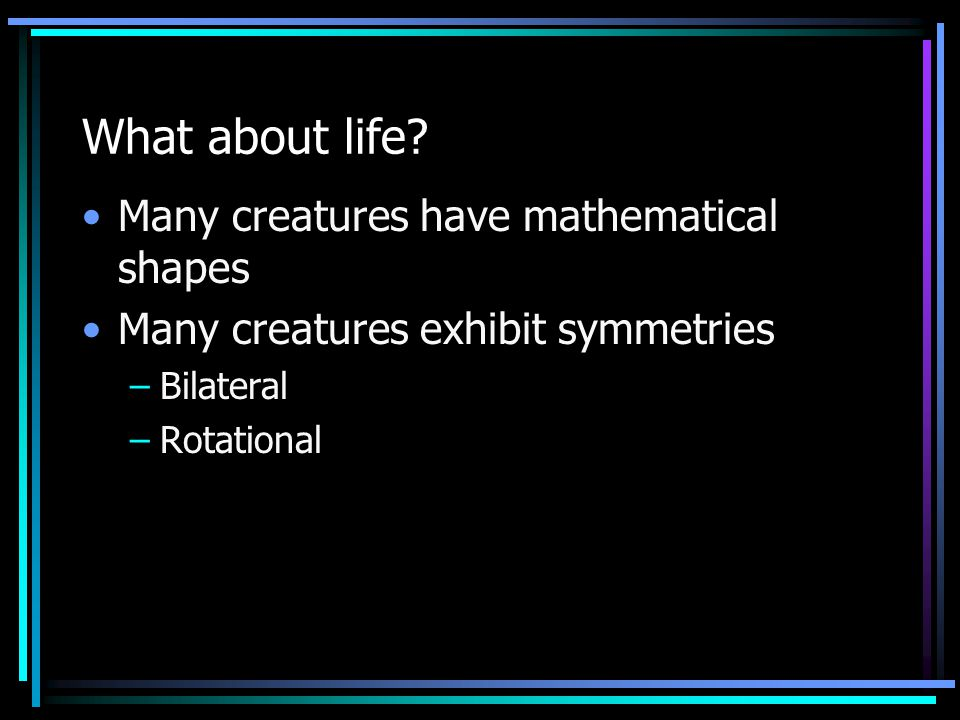 What about life? Many creatures have mathematical shapes Many creatures exhibit symmetries –Bilateral –Rotational