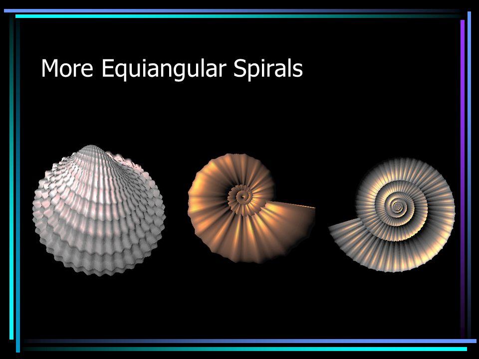 More Equiangular Spirals