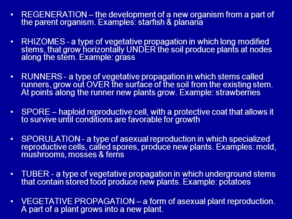 Methods of Asexual Reproduction