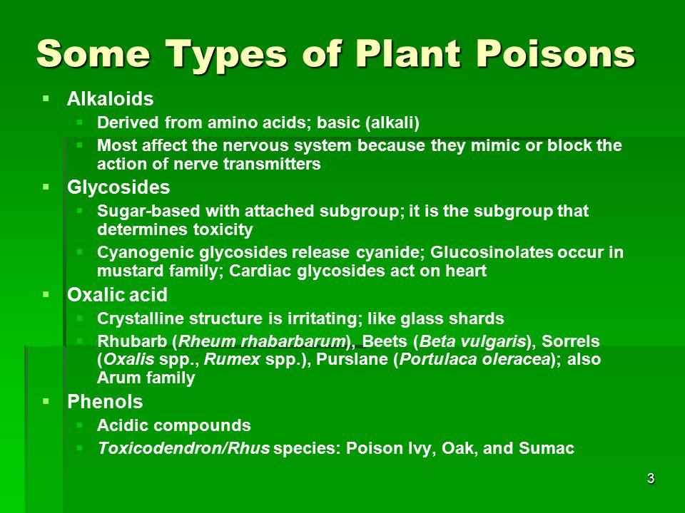 4 Edible plants and toxins  Potato.