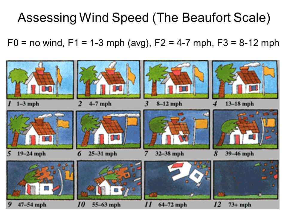 Assessing Wind Speed (The Beaufort Scale) F0 = no wind, F1 = 1-3 mph (avg), F2 = 4-7 mph, F3 = 8-12 mph