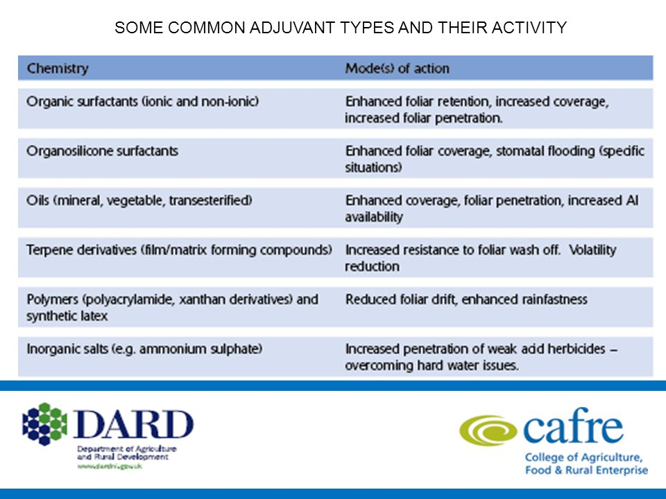 SOME COMMON ADJUVANT TYPES AND THEIR ACTIVITY