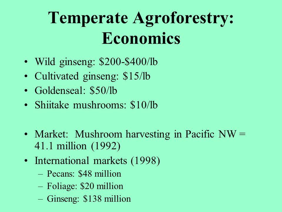 Temperate Agroforestry: Economics Wild ginseng: $200-$400/lb Cultivated ginseng: $15/lb Goldenseal: $50/lb Shiitake mushrooms: $10/lb Market: Mushroom
