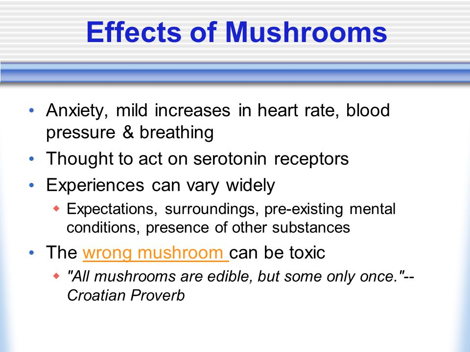 Effects of Mushrooms Anxiety, mild increases in heart rate, blood pressure & breathing Thought to act on serotonin receptors Experiences can vary widely  Expectations, surroundings, pre-existing mental conditions, presence of other substances The wrong mushroom can be toxicwrong mushroom  All mushrooms are edible, but some only once. -- Croatian Proverb