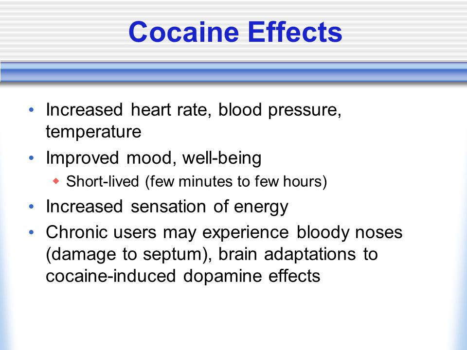 Cocaine Effects Increased heart rate, blood pressure, temperature Improved mood, well-being  Short-lived (few minutes to few hours) Increased sensation of energy Chronic users may experience bloody noses (damage to septum), brain adaptations to cocaine-induced dopamine effects