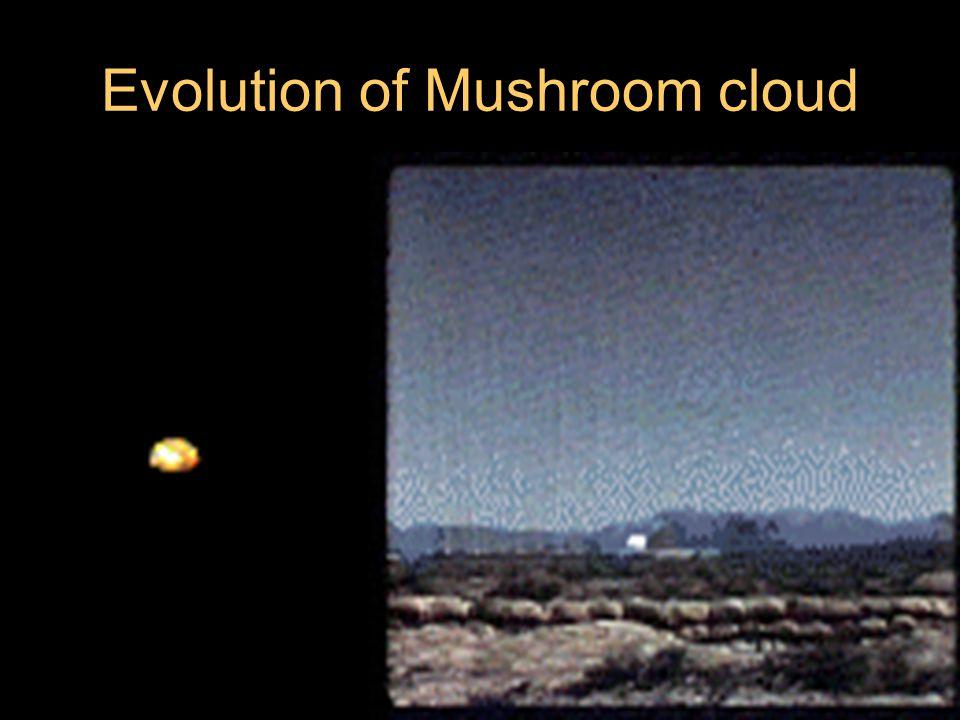 Evolution of Mushroom cloud