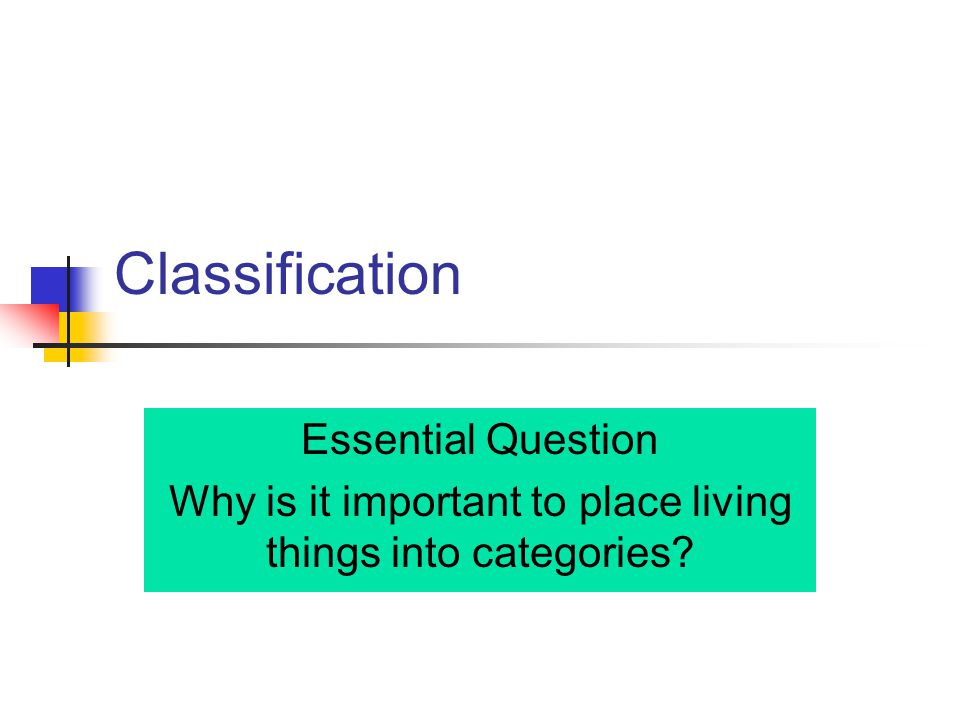 Classification Essential Question Why is it important to place living things into categories?