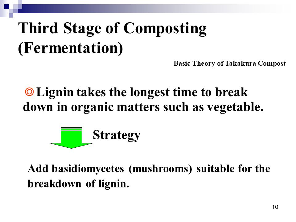 10 Third Stage of Composting (Fermentation) Add basidiomycetes (mushrooms) suitable for the breakdown of lignin.
