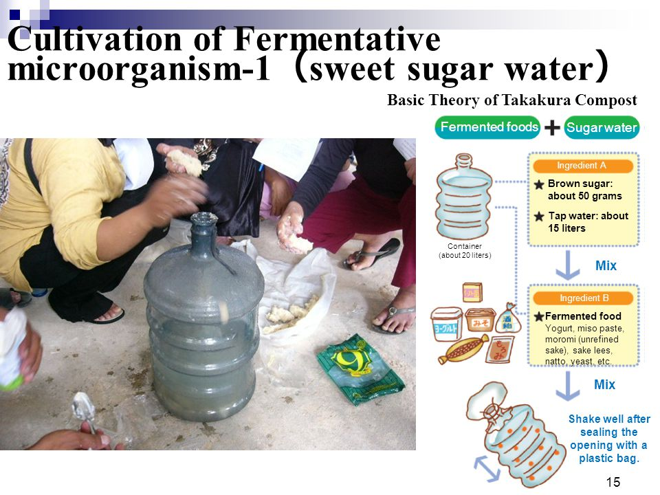 15 Cultivation of Fermentative microorganism-1 ( sweet sugar water ) Fermented foods Sugar water Container (about 20 liters) Ingredient A Brown sugar: about 50 grams Tap water: about 15 liters Mix Ingredient B Fermented food Yogurt, miso paste, moromi (unrefined sake), sake lees, natto, yeast, etc.