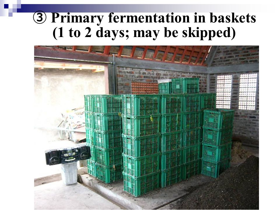 ③ Primary fermentation in baskets (1 to 2 days; may be skipped)