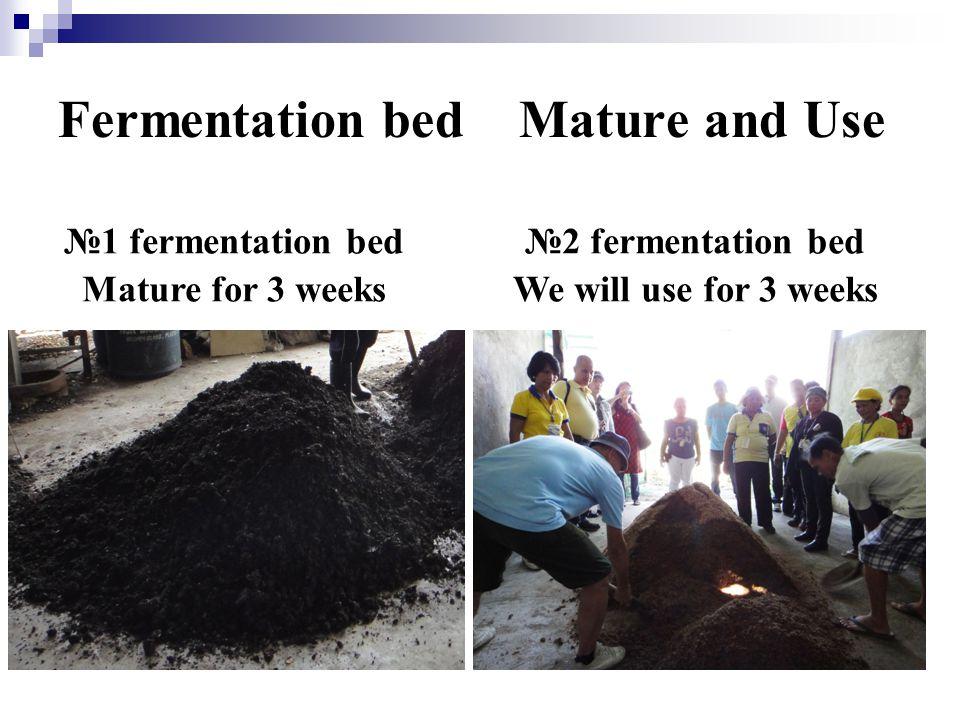 Fermentation bed Mature and Use №1 fermentation bed Mature for 3 weeks №2 fermentation bed We will use for 3 weeks
