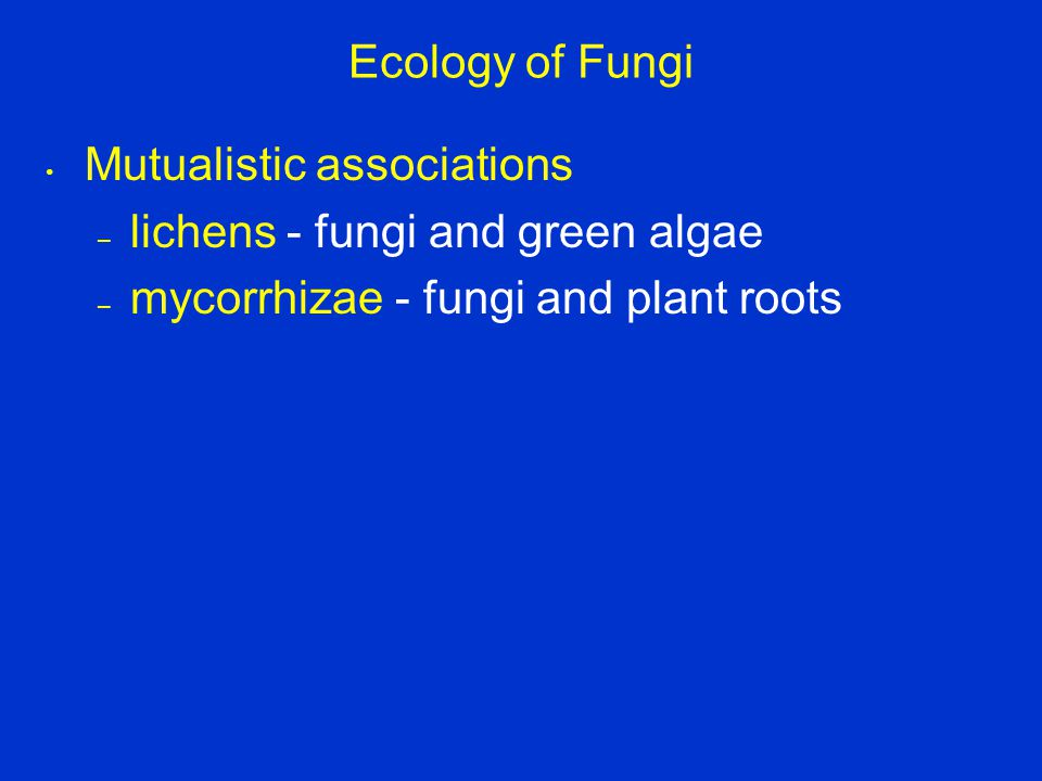 Ecology of Fungi Mutualistic associations – lichens - fungi and green algae – mycorrhizae - fungi and plant roots