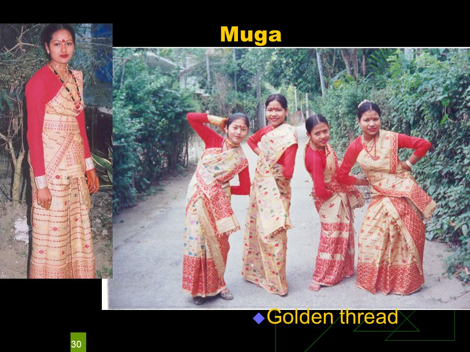 30 Muga  Golden thread