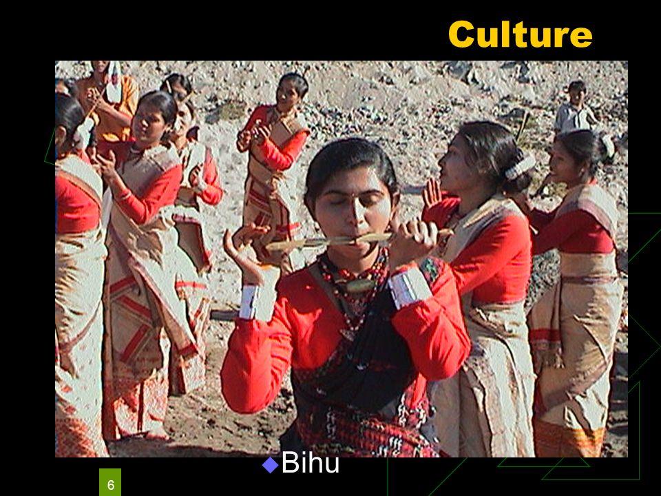 6 Culture  Bihu