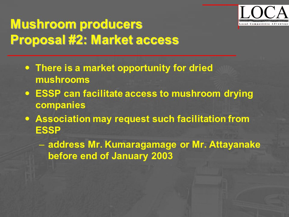 Mushroom producers Proposal #2: Market access There is a market opportunity for dried mushrooms ESSP can facilitate access to mushroom drying companies Association may request such facilitation from ESSP –address Mr.