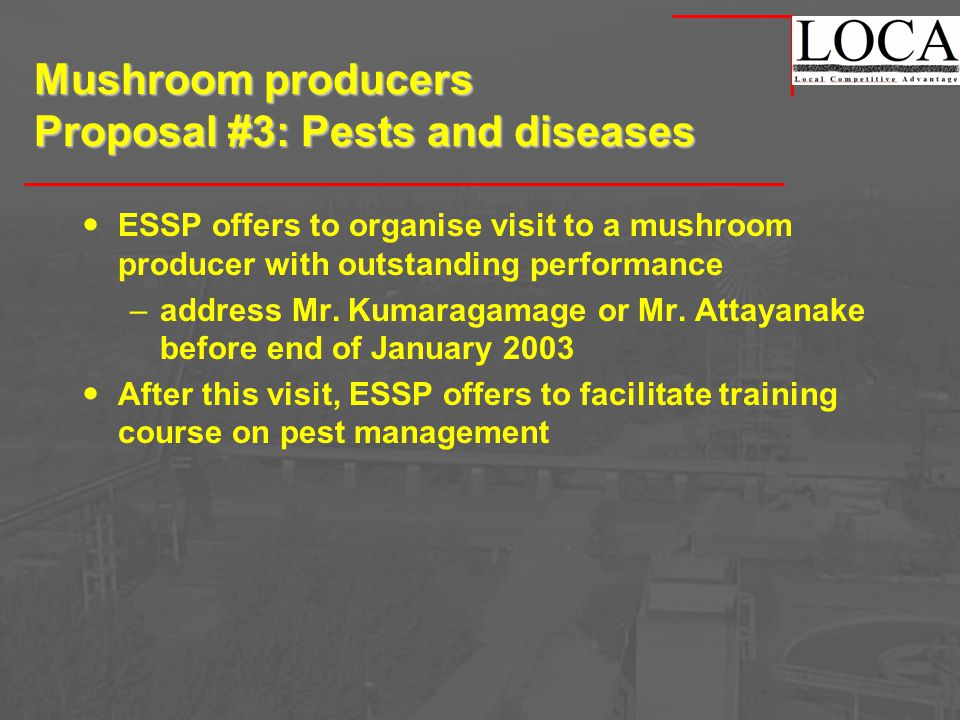 Mushroom producers Proposal #3: Pests and diseases ESSP offers to organise visit to a mushroom producer with outstanding performance –address Mr.