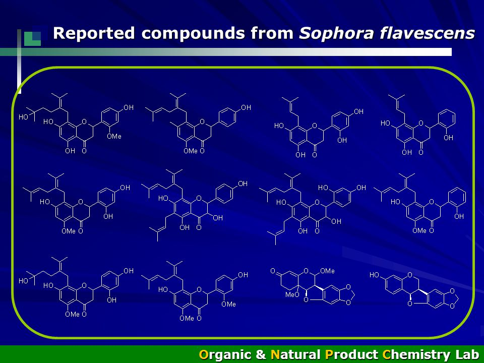 Reported compounds from Sophora flavescens Organic & Natural Product Chemistry Lab