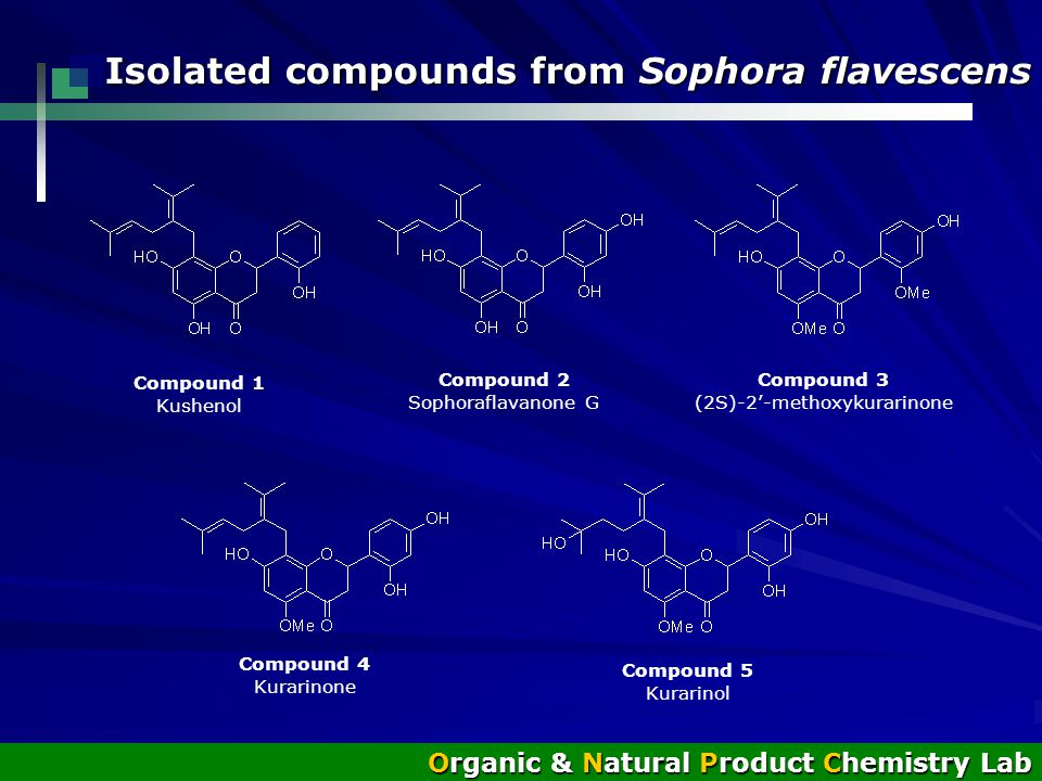 Isolated compounds from Sophora flavescens Organic & Natural Product Chemistry Lab Compound 1 Kushenol Compound 2 Sophoraflavanone G Compound 3 (2S)-2'-methoxykurarinone Compound 4 Kurarinone Compound 5 Kurarinol