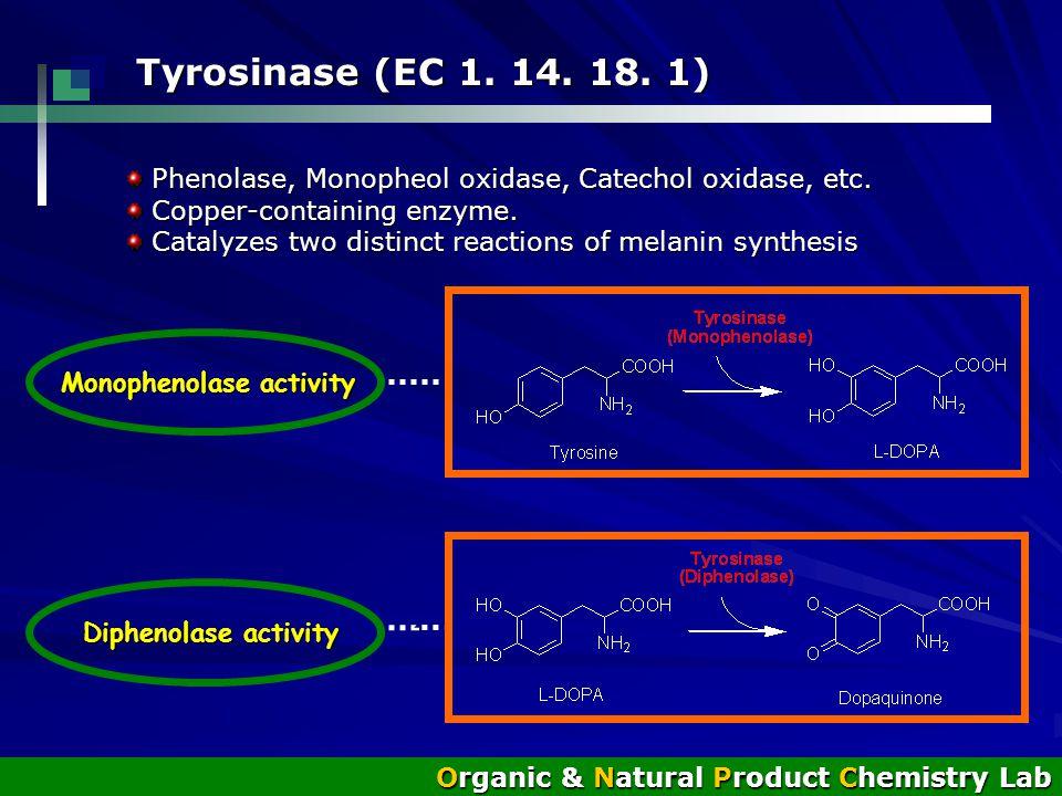 Monophenolase activity Monophenolase activity Diphenolase activity Diphenolase activity Tyrosinase (EC 1.