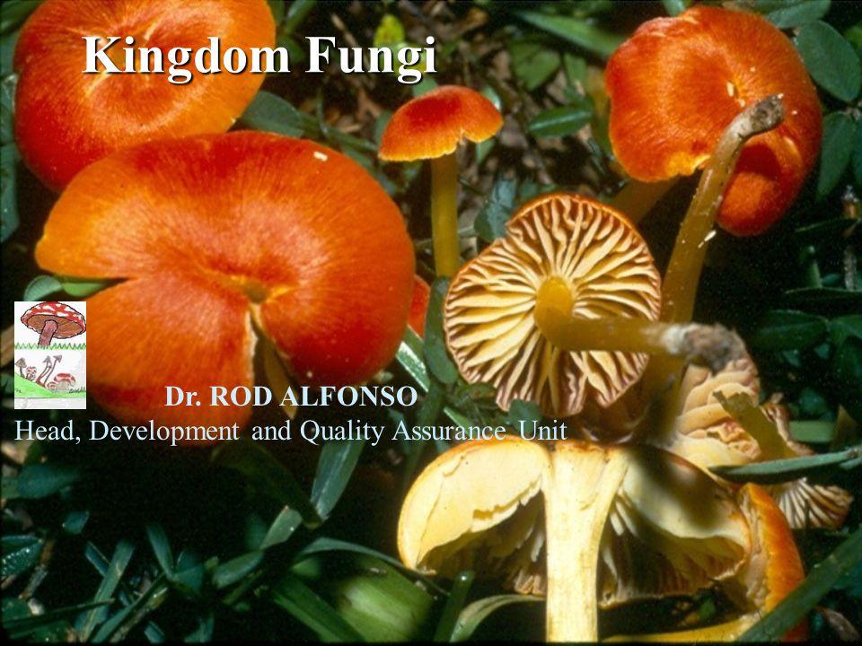 Kingdom Fungi Dr. ROD ALFONSO Head, Development and Quality Assurance Unit