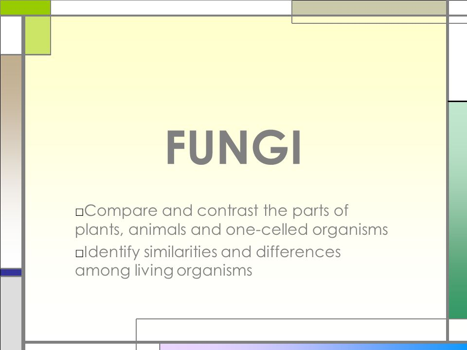 FUNGI □Compare and contrast the parts of plants, animals and one-celled organisms □Identify similarities and differences among living organisms