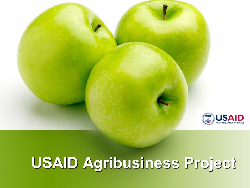 USAID Agribusiness Project Cattle - Beef Transitioning from Existing Dual Purpose Dairy & Beef Cow Businesses